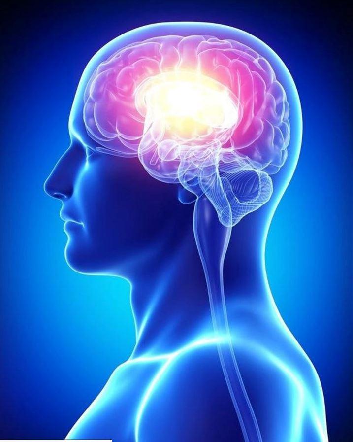 неврология в картинках тот